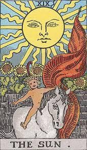 タロの太陽.jpg